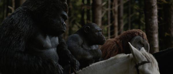 Planet der Affen: Survival - Ty Olsson (Rex), Terry...rice)